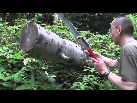 Silky BIGBOY 360mm LG Teeth folding saw wood cut demo
