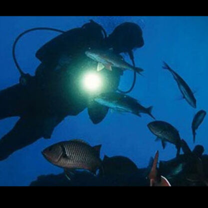 Led Lenser D14.2 Neon Diving Torch (4x AA Battery) - 400 Lumen-2448